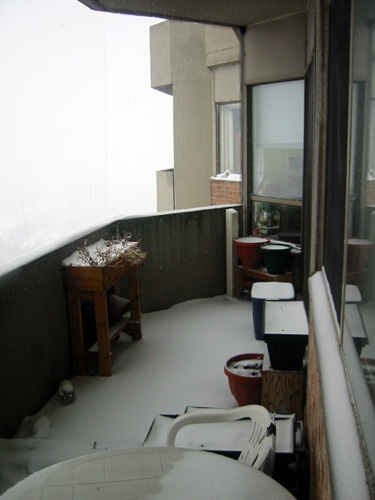 Winter 2007, looking north